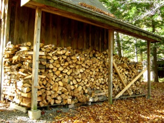 "Three cords of ""green"" wood stacked and seasoning for burning -- next winter."